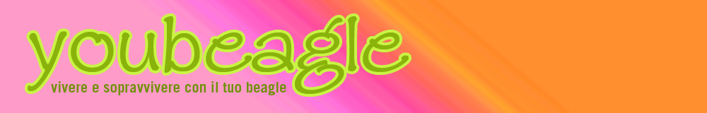YouBeagle.com